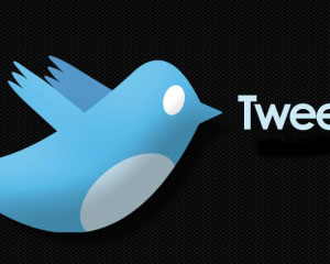 8 Twitter Tips for Promoting Your Blog